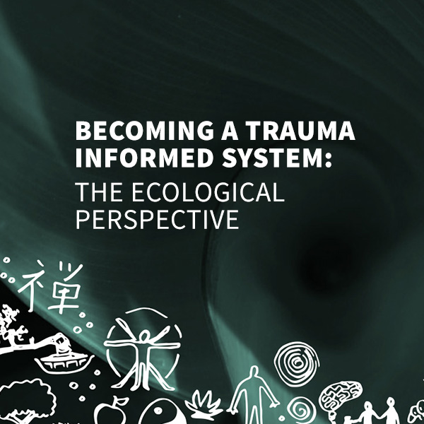 Building a Trauma Informed System