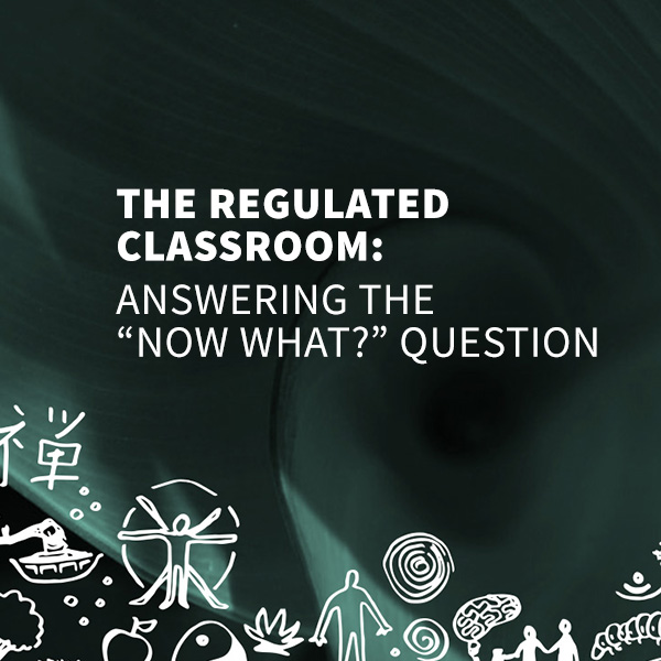 """THE REGULATED CLASSROOM: Answering the """"Now what?"""" Question"""