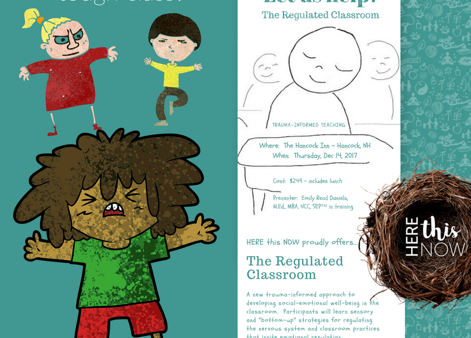 "I NEED to Self-Regulate:  Rolling Out, ""The Regulated Classroom"""